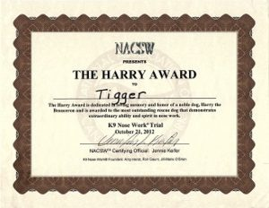 Tigger's Harry Award